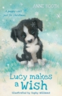 Lucy Makes a Wish - Book