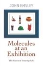 Molecules at an Exhibition : Portraits of Intriguing Materials in Everyday Life - Book