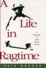 A Life in Ragtime : A Biography of James Reese Europe - eBook