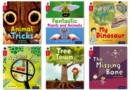 Oxford Reading Tree inFact: Oxford Level 4: Class Pack of 36 - Book