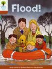 Oxford Reading Tree: Level 8: More Stories: Flood! - Book