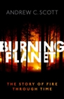 Burning Planet : The Story of Fire Through Time - Book