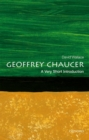 Geoffrey Chaucer: A Very Short Introduction - Book