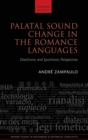 Palatal Sound Change in the Romance Languages : Diachronic and Synchronic Perspectives - Book