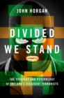 Divided We Stand : The Strategy and Psychology of Ireland's Dissident Terrorists - eBook