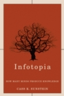 Infotopia : How Many Minds Produce Knowledge - eBook