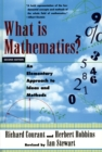 What Is Mathematics? : An Elementary Approach to Ideas and Methods - eBook