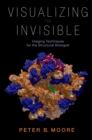 Visualizing the Invisible : Imaging Techniques for the Structural Biologist - eBook