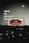 What Do Pictures Want? : The Lives and Loves of Images - eBook