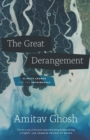 The Great Derangement : Climate Change and the Unthinkable - eBook