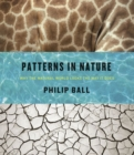 Patterns in Nature : Why the Natural World Looks the Way it Does - Book