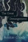 The Great Derangement : Climate Change and the Unthinkable - Book