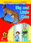 Macmillan Children's Readers Big and Little Cats Level 3 - Book