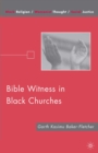 Bible Witness in Black Churches - eBook