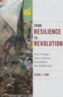 From Resilience to Revolution : How Foreign Interventions Destabilize the Middle East - Book