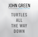 Turtles All the Way Down - Book