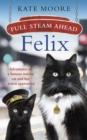 Full Steam Ahead, Felix : Adventures of a famous station cat and her kitten apprentice - Book