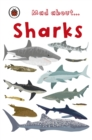Mad About Sharks - eBook