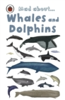 Mad About Whales and Dolphins - eBook
