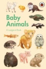 A Ladybird Book: Baby Animals - Book