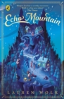 Echo Mountain - Book