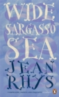 Wide Sargasso Sea - Book