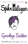 Goodbye Soldier - eBook