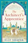 The Architect's Apprentice - eBook