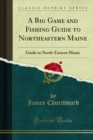 A Big Game and Fishing Guide to Northeastern Maine : Guide to North-Eastern Maine - eBook
