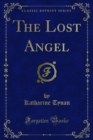 The Lost Angel - eBook