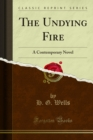 The Undying Fire : A Contemporary Novel - eBook