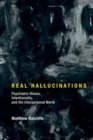 Real Hallucinations : Psychiatric Illness, Intentionality, and the Interpersonal World - Book