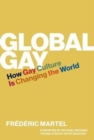 Global Gay : How Gay Culture Is Changing the World - Book