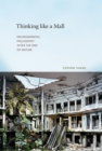 Thinking like a Mall : Environmental Philosophy after the End of Nature - eBook