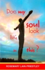 Does My Soul Look Big in This? - eBook