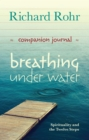 Breathing Under Water Companion Journal : Spirituality and the Twelve Steps - eBook