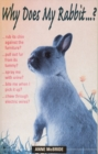 Why Does My Rabbit...? - eBook