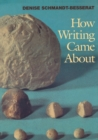 How Writing Came About - Book
