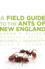 A Field Guide to the Ants of New England - eBook