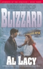 Blizzard - eBook