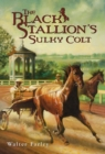 The Black Stallion's Sulky Colt - eBook