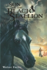 Son of the Black Stallion - eBook