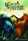 The Black Stallion and Flame - eBook
