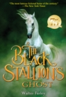 The Black Stallion's Ghost - eBook
