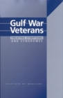 Gulf War Veterans : Treating Symptoms and Syndromes - eBook