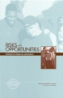 Risks and Opportunities : Synthesis of Studies on Adolescence - eBook
