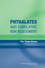 Phthalates and Cumulative Risk Assessment : The Tasks Ahead - eBook