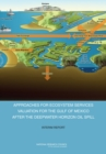 Approaches for Ecosystem Services Valuation for the Gulf of Mexico After the Deepwater Horizon Oil Spill : Interim Report - eBook