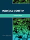 Mesoscale Chemistry : A Workshop Summary - eBook
