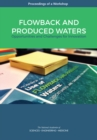 Flowback and Produced Waters : Opportunities and Challenges for Innovation: Proceedings of a Workshop - eBook